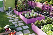 jardin/potager