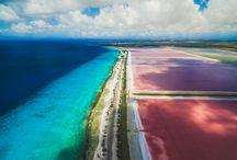 Bonaire / Dit Caribische vakantie-eiland behoort samen met Aruba en Curaçao tot de zogenaamde ABC-eilanden en is vooral bekend vanwege de fascinerende onderwaterwereld met adembenemende koraalriffen en talloze vissoorten in de meest exotische kleuren. Het zal u dan ook niet verbazen dat dit eiland 'Divers Paradise' wordt genoemd en één van de populairste duikbestemmingen ter wereld is.