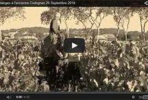 Vendanges à l'ancienne Codognan / Vendanges à l'ancienne Codognan 2014 Camargue TV