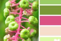 Barvy na web