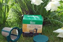 Get brewing loose leaf tea / Come and explore the world of loose leaf tea - see the infusers - see the tea in full brew.