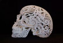 TYPOLOGY: Skulls & skeletons / Skulls and skeletons