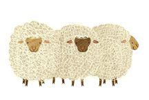 SHEEP  -  ILLUSTRATION / by Syllabubble