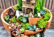 Miniature gardens <3