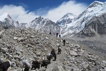 http://www.mustangtrekkinginnepal.com/nar-phu-valley-to-upper-mustang-trek.html
