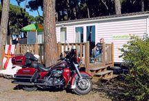 Wakacje dla miłośników motocykli Harley-Davidson! / Eurocamp to lider w organizowaniu wakacji na campingach oferujący wygodne zakwaterowanie w najbardziej atrakcyjnych miejscach Europy. Wolność, poczucie komfortu i przestrzeni oraz swoboda w kreowaniu pobytu - Eurocamp to doskonały wybór dla amatorów dwóch kółek!   http://eurocamp.pl/hog
