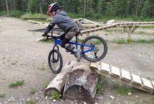 Backyard bikepark