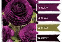 Olive + purple