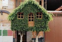 Tree house / by Zora Naki