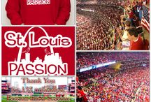 Cardinal Nation / by Sarah Michelle
