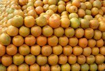We Love Oranges!
