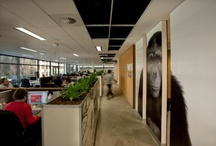 sweet offices / by Geoff Wood