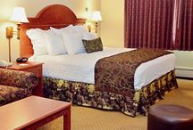 Our Comfortable Guest Rooms / When you come to stay the night with us we will make sure that you are comfortable. All of our guest rooms come with a mini fridge and microwave too. You will find a full kitchen along with a dining area and separate bedroom in our Extended Stay Suites.
