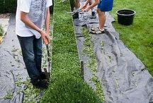 tips n trik gardener