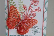 SU Butterfly Basics / by Marsha Lasher