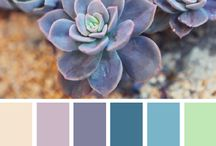 Graphic (Color).