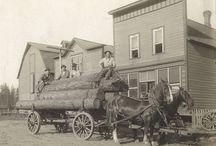 Horse carts and buggies