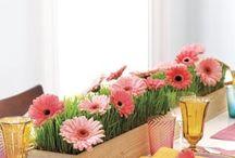 decorazioni per la tavola