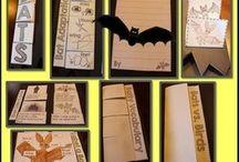 Themes (Bats)