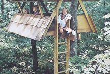Játék az erdőn