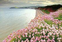 Inspirational Coast