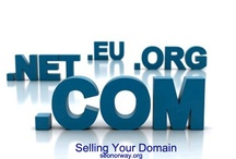 domain and website auction