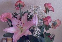 virágok / Márciusi virágok
