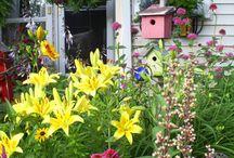 For the Garden / by Christina Keller