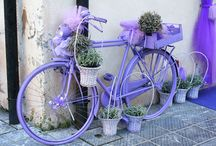 Bicycles / pedal and petal power