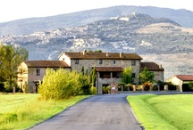 Beautiful Villa rental apartments in Tuscany / Great Trips are created in your mind, to experience it, you must visit Tuscany.