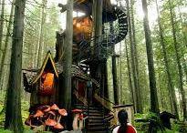 Treehouse's♡