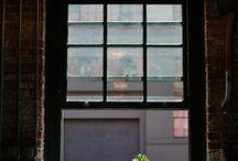 plants & lights