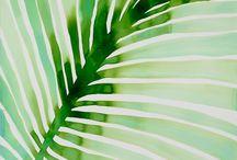 Palm Desert project