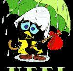 Buongiorno piovoso ..