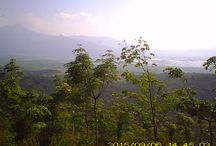 Goa Rong View