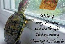 Optimismo :)