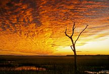 Skyscapes / Images of beautiful and interesting  cloud formations and  colours. Started with a few of my images, but I will be adding any I find and admire on other Boards.