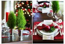 Christmas ideas for 2014 / by Becky Johns