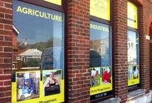 Shop Fronts & Signage