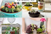Details n plants n stuff