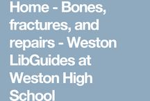 WHS Lib Guides / We make these guides to help you with projects, in collaboration with your teachers. Browse and try!