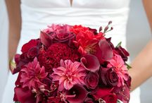 Flowers / Bride and bridesmaid