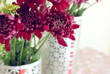 everyday lovely / by Lauren Bridges
