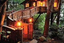 casas árboles