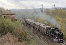Treni a Vapore