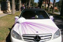 decorar carros