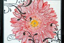S U - Sunflower
