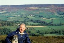 "James Herriot / A veterinarian in Yorkshire. Writer of his now famous memoir : ""All creatures great and small"""