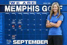 2013-14 Wallpaper / by Memphis Athletics