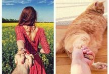 Funny Pics / Funny pics of lovely pets.